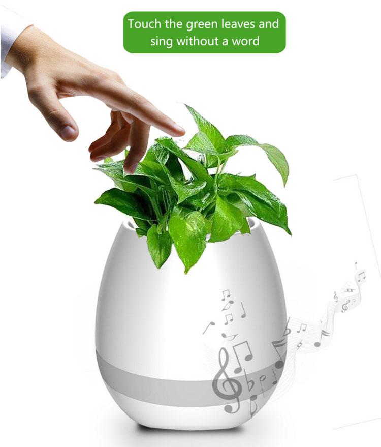 Flowerpot Speaker Bloto's